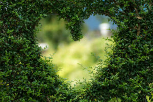 Hurtige og billige romantiske ideer der viser din kærlighed