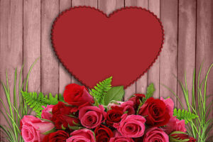 Overrask kæresten med romantiske blomster (Hvorfor & hvilke)